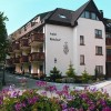 Hotel Rebstock Ohlsbach
